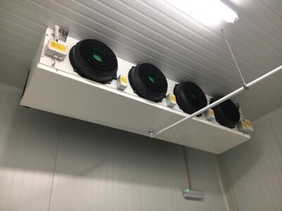 Evaporador cámara BT