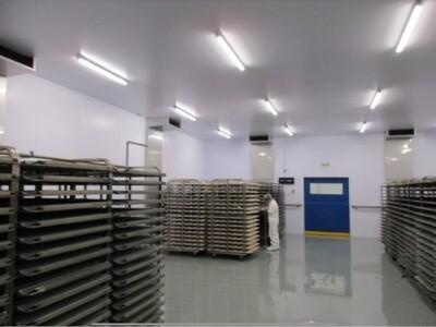 CFLP Maturpan - impianto industriale - Perù