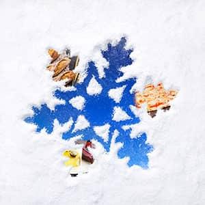 Impianti refrigerati per il settore Arte Bianca